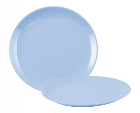 "10"" Flat Plate"